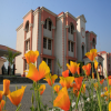 Uttaranchal University-Campus
