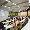 James Cook University (Townville Cairns)-Gallery