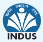 Institute of Design Environment & Architecture - Indus University Logo
