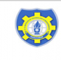 DS institute of Technology & Management Logo