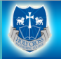 Holy Cross Engineering College logo