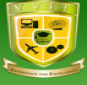 Varuvan Vadivelan Institute of Technology Logo